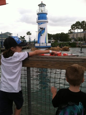 Oscar:Sawyer Sea World